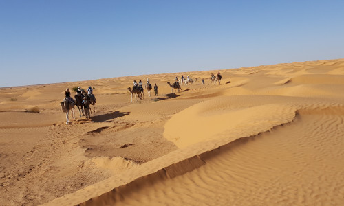 - Djerba desert balade